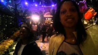 Travel:Vegas Thumbnail