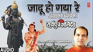 जादू हो गया रे कैसा Jadu Ho Gaya Re Kaisa I SURESH WADKAR I Shani Bhajan I SURYAPUTRA SHANIDEV