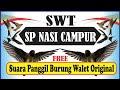 Sp Nasi Campur Walet Putih A Sp Dengan Audio Paling Bening Dan Jernih  Mp3 - Mp4 Download