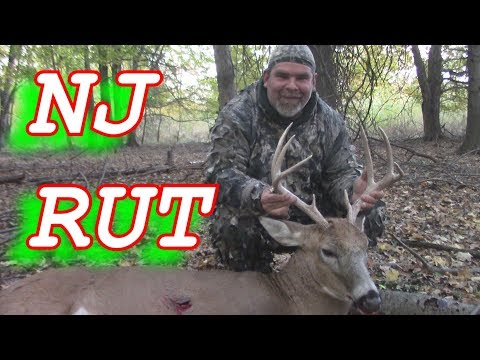 RATTLING In BUCK To 20 Yards -BOW HUNTING NJ-