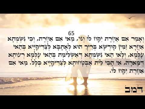 Happy Day Light Warriors!!! ZOHAR Daily Reading Mishpatim 65-68 Love & Light