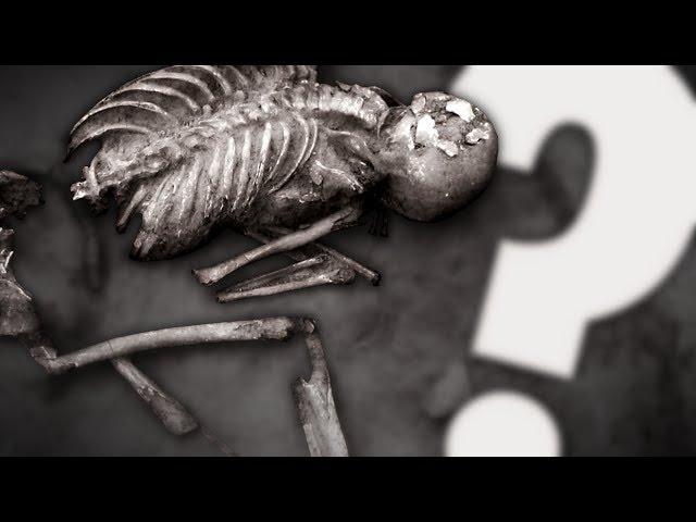 Un sacrifice humain PRÉHISTORIQUE ? | Mini documentaire