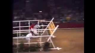 World Record   Horse High Jump 2 32 meters