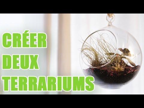 cr er des terrariums suspendus dans une boules en verre. Black Bedroom Furniture Sets. Home Design Ideas