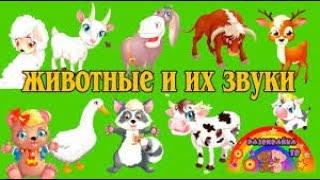 УЧИМ ЖИВОТНЫХ! СБОРНИК животные для самых маленьких детей на русском видео! Все серии про жи