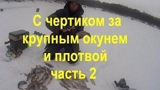 Зимняя рыбалка.Ловля на безмотылки.Ловля крупной рыбы на чертик.Часть 2-я(2-я часть трудовой рыбалки по крупному окуню с помощью чёртика., 2016-12-07T21:19:53.000Z)