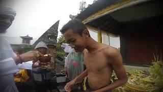 Otonan mebayuh lan menek kelih -Wayan Febrian Surya Ananta-