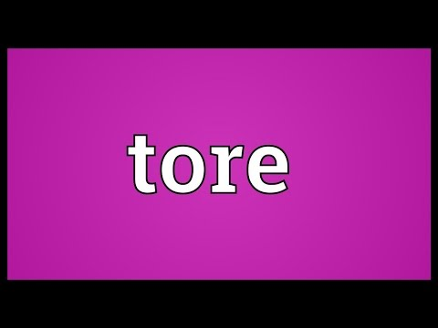 Tore Meaning