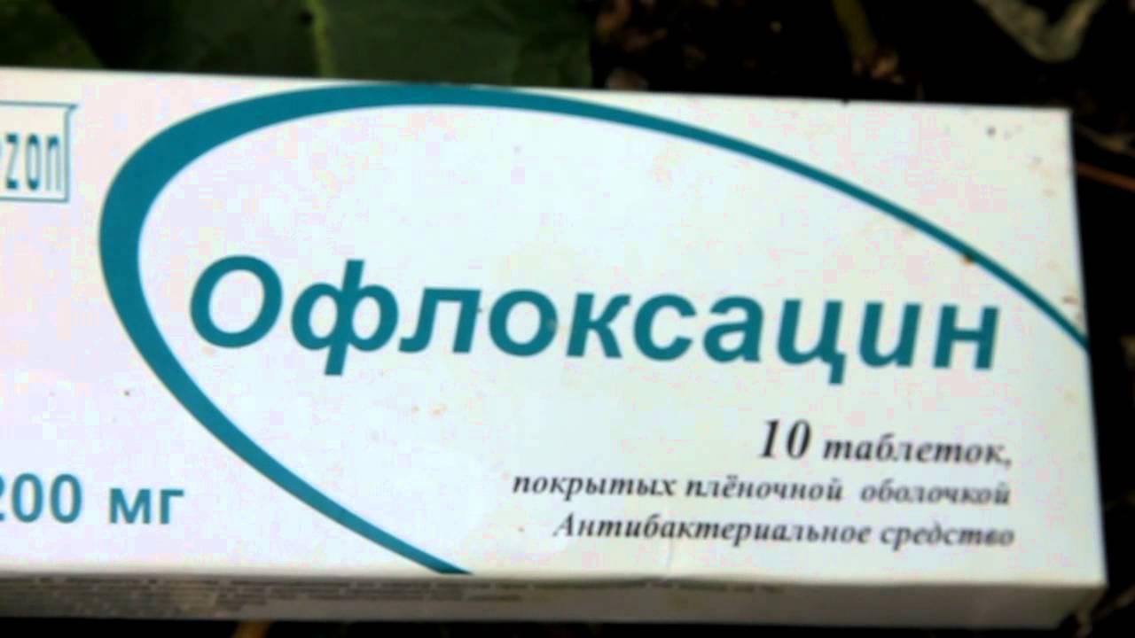 распопов лечение бактериального ожего груши тетрациклином