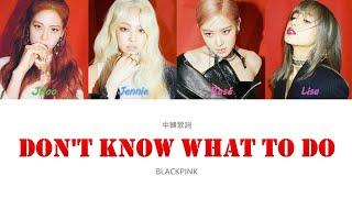【認聲中字】BLACKPINK - Don't Know What To Do (Color Coded Lyrics Han/Cht)