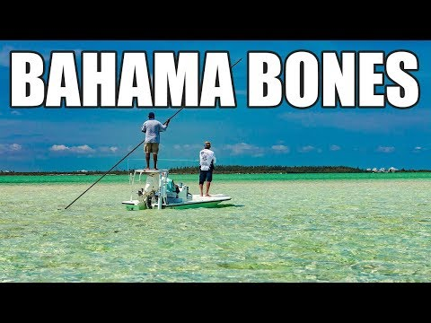 Epic Fly Fishing Schooling Bonefish In Chub Cay Bahamas