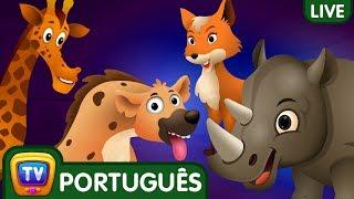 Ovos Surpresa | Canções em Português para Crianças | ChuChuTV Brazil Live Stream