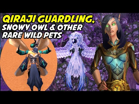 Where and when to find the rare wild pets in WoW