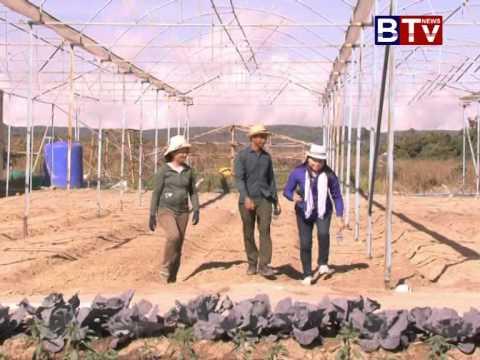 Bokor Organic Farm Ver 01 (កសិកម្ម - បន្លែសរីរាង្គ នៅបូកគោ វគ្គ 01)