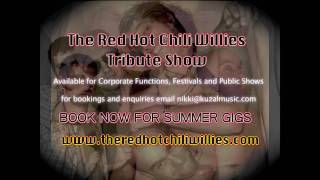 The Red Hot Chili Willies