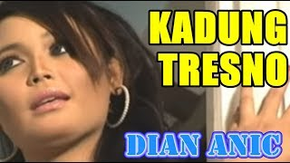 Download DIAN ANIC - KADUNG TRESNO [ANICA NADA] Mp3