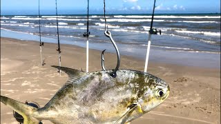 Beach shark fishing live! Big bait
