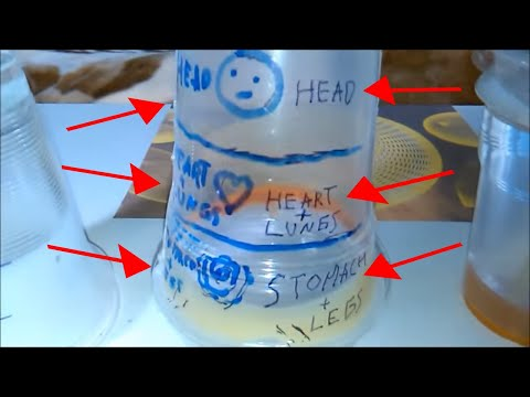 How Plasma Health Cup Works, How To Drink From Cup Of Llife, Tutorial, Keshe Technology For Healing