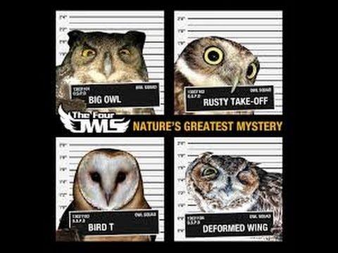 The Four Owls - Life In The Balance Lyrics