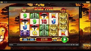 Online Slots with The Bandit - Vampires, White Rabbit and More!
