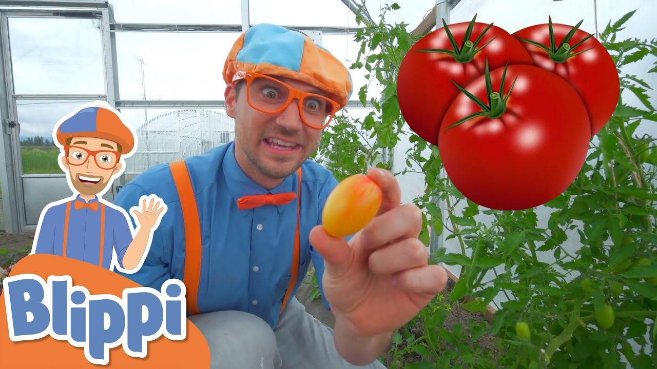 Blippi Visits a Farm! | Learn About Healthy Eating For Kids | Educational Videos for Toddlers