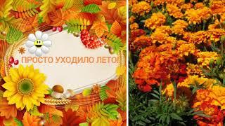 ВИА ВЕСЕЛЫЕ РЕБЯТА-УХОДИЛО ЛЕТО( слайд шоу)