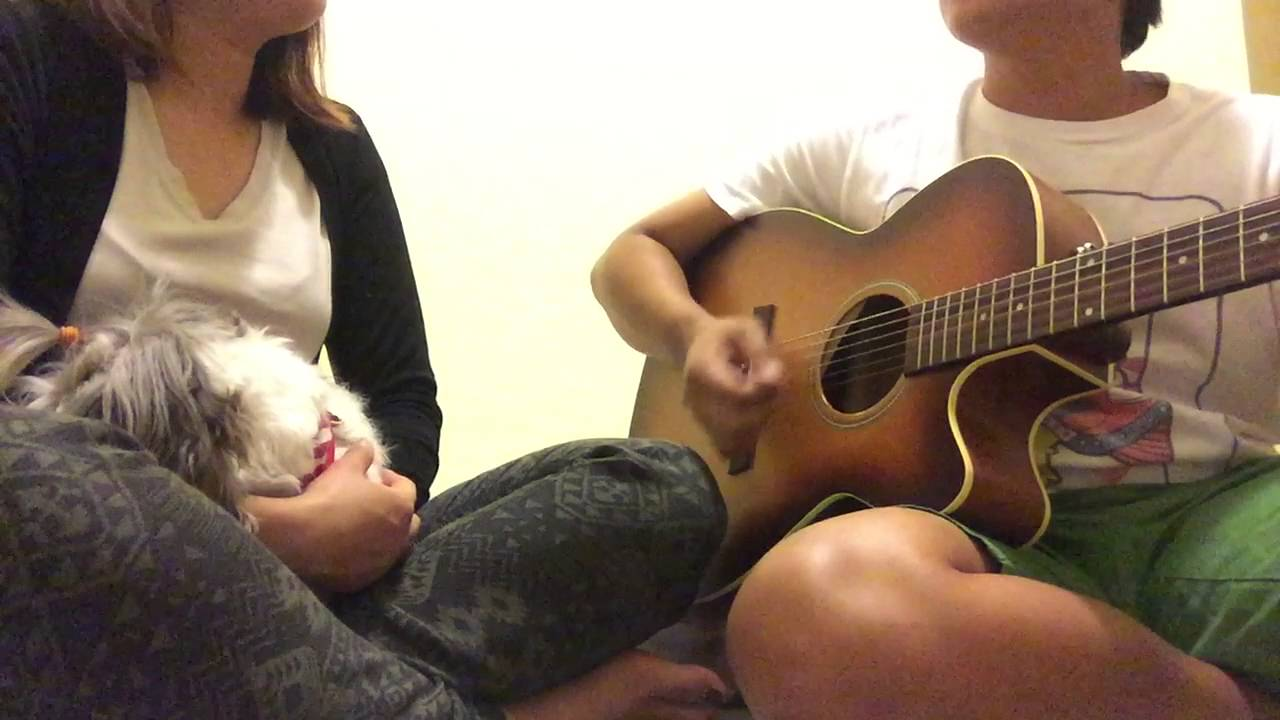 Something I Need cover of a cover by Moira Chords   Chordify