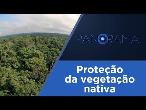 Panorama | Novo Código Florestal | 21/03/2018