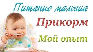 Питание малыша 3 - 9 месяцев. Введение  прикорма. Все этапы.