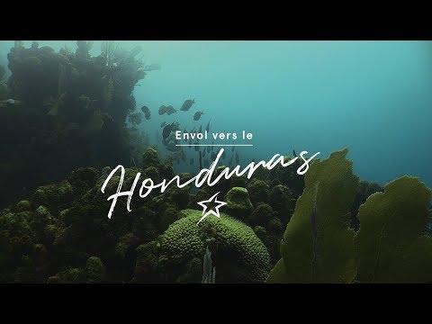 Útila : Un paradis pour la plongée au Honduras