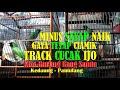 Track Trek Cucak Ijo Minus Sayap Naik Di Kios Burung Bang Samin Kedaung Pamulang By Hobi Id  Mp3 - Mp4 Download