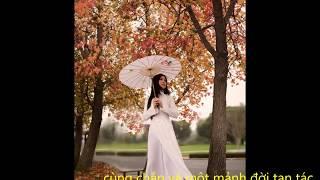 Một chiều mưa bay Sáng tác Nguyễn Dũng