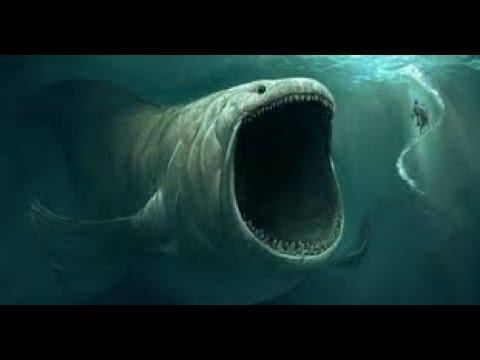Download Oceanos - El Universo Verdaderamente Desconocido - Documental Español HD 2020