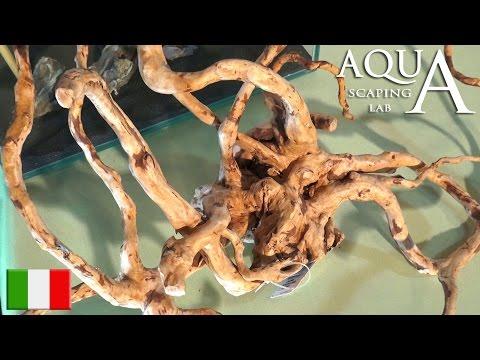 Patina bianca su legno acquario doovi for Legni per acquario