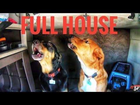 My Trucking Life | FULL HOUSE | #1750