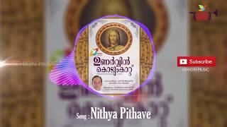 Nithya Pithave Biju Karukutty Unarvin Kodumkattu