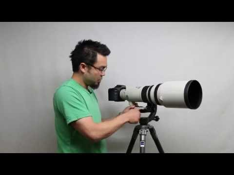 Balancing your camera and lens on a Wimberley Head (WH-200)