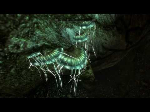 SKYRIM eps309 What To Do, What To Do