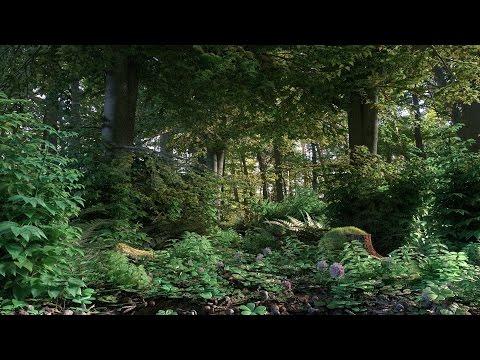 Livestream - Blender 3D - Nature Scene [German] - Part 2