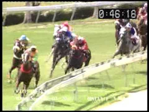 ม้าแข่งสนามฝรั่ง วันอาทิย์ที่ 26 พค. 56 เที่ยวที่ 4