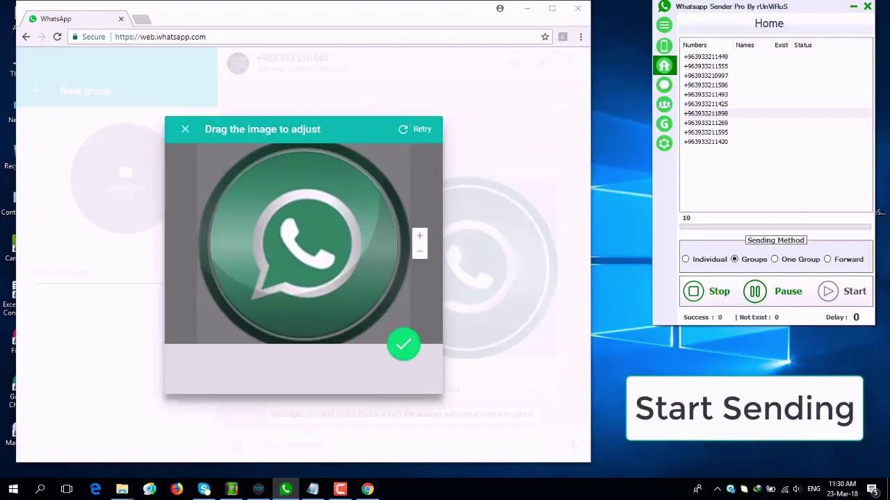 WhatsApp Bulk Sender | WhatsApp Blasting & Marketing Software