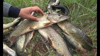 Эта блесна ловит ВСЕГДА!!! Рыбалка на ЩУКУ с лодки!!!