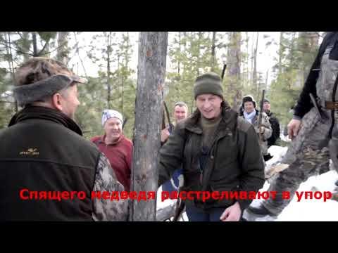 Глава Иркутской области Сергея Левченко застрелил медведя