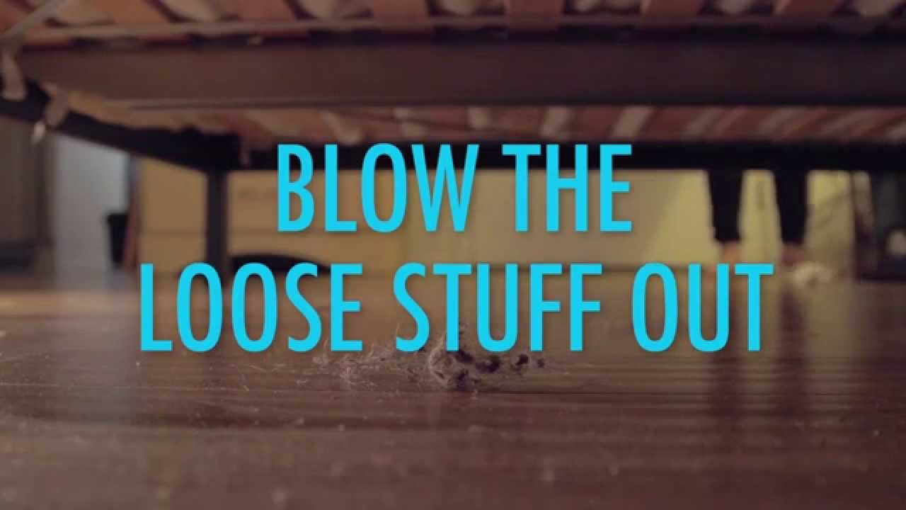 The Easiest Way to Clean Dust Bunnies - YouTube
