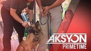 14 narcotic dogs ng PDEA, pinarangalan