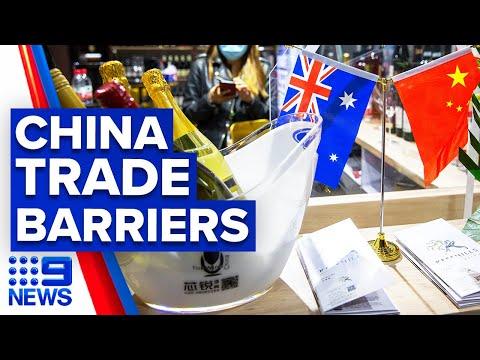 China extends war on Australian imports to wine | 9 News Australia