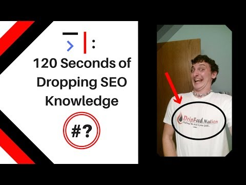 What Are These Things? | 120 Seconds (A little over) of SEO Knowledge