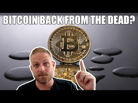 🚀🌕 Bitcoin Back From the Dead?