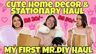 Cutest Home Decor, Stationary & Hair Accessory Haul | Everything Under Rs. 550 |
