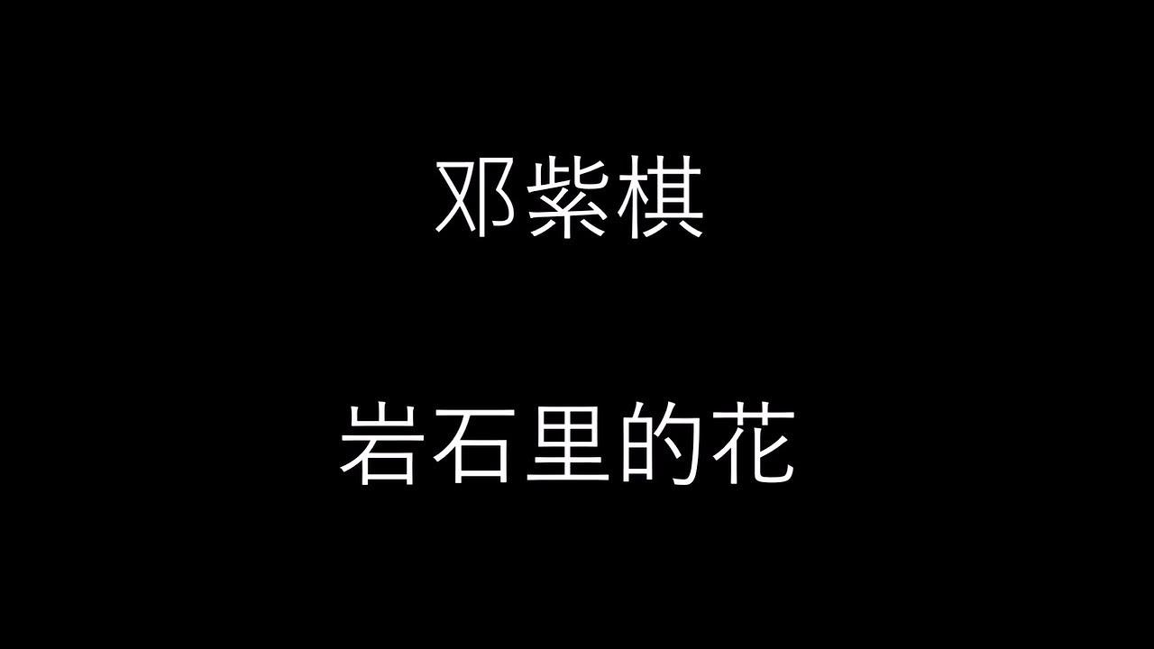 邓紫棋 [岩石里的花] 歌词